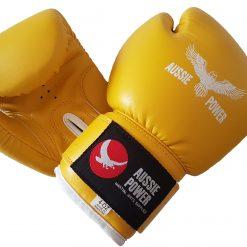 Boxing, Kickboxing & Muai Thai